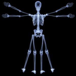 X-Ray's today; depiction of Da Vinci's Vitruvian Man